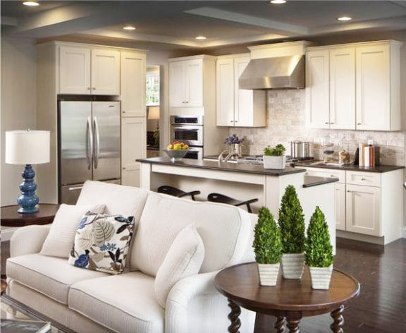 Дизайн кухни совмещенной с гостиной и диваном