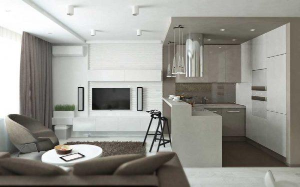 студио - кухня с гостиной